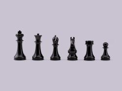 pieces_black_match[1]